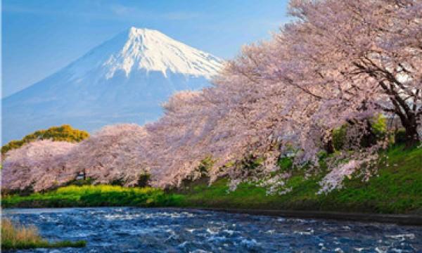 网上酒店日语口语培训哪个好?经验人士说说自己的看法